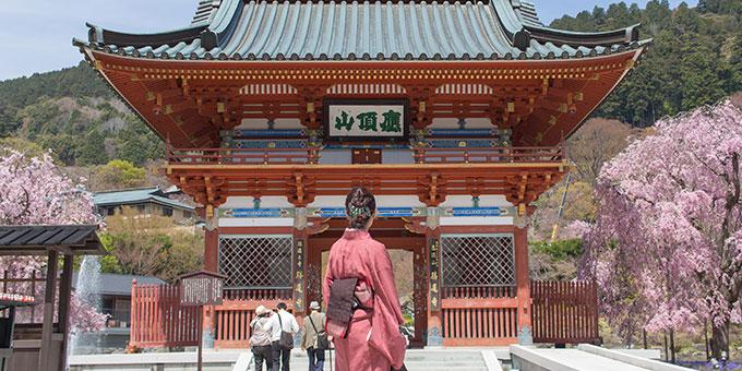diary_sakura2016_katsuoji