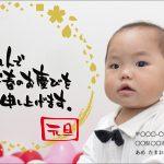 web_nenga_2017_02